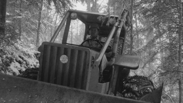 Les forêts en Suisse en 1969. [RTS]
