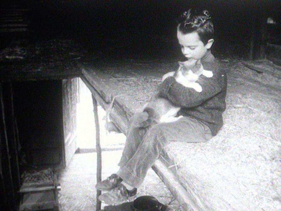 Mon chat en 1964. [RTS]