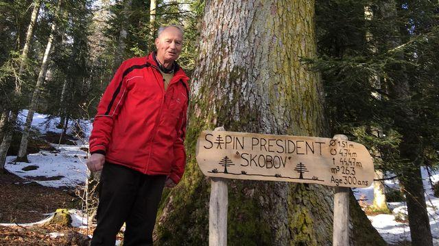 """Les deux """"Skobov"""", l'arbre et l'ancien garde forestier.  [Julie Henoch - RTS]"""
