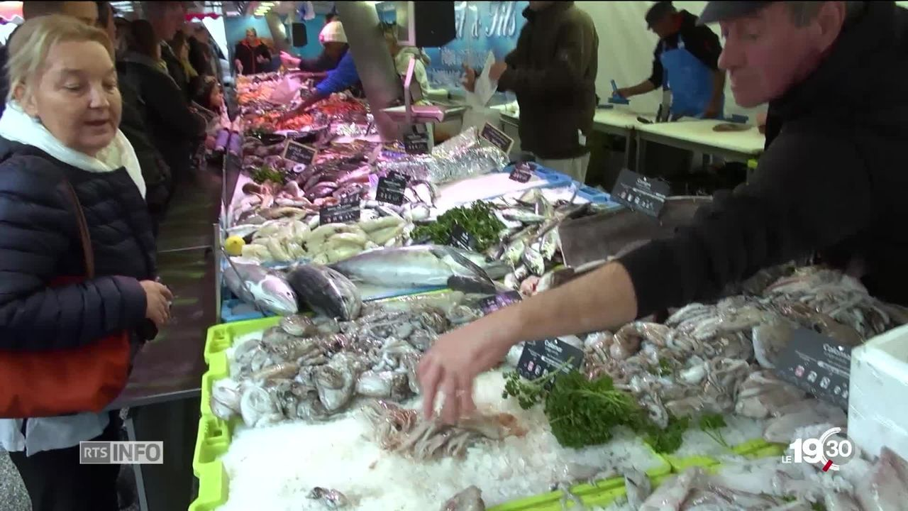 Les antispécistes s'attaquent à la pêche et au développement de l'aquaculture en Suisse [RTS]