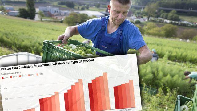 Fin 2018, 6719 fermes ont produit selon les directives de Bio Suisse, soit 296 de plus qu'un an plus tôt. [Gaetan Bally - Keystone]