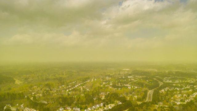 """Une """"pollenpocalypse"""" à Durham, en Caroline du Nord, capturée depuis un drone. [Jeremy Gilchrist - DR/Facebook]"""