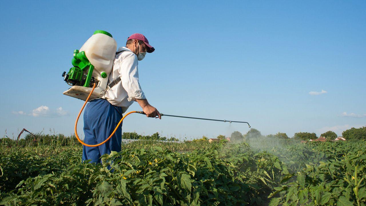 Les pesticides sont utilisés avec toujours plus de parcimonie en Suisse. [Dusan Kostic - Fotolia]