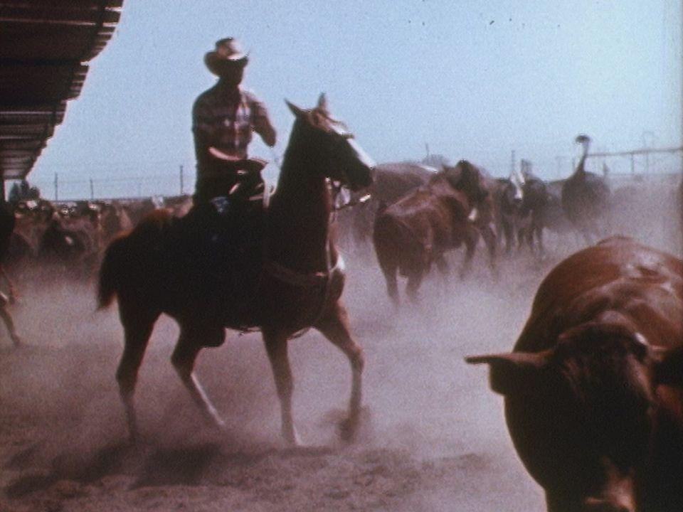 Far West, l'héritage [RTS]