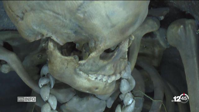 Le musée Jurassica de Porrentruy propose une enquête préhistorique pour découvrir le métier d'archéologue. [RTS]