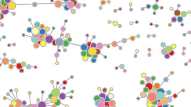Une carte des gènes. Unige [Unige]