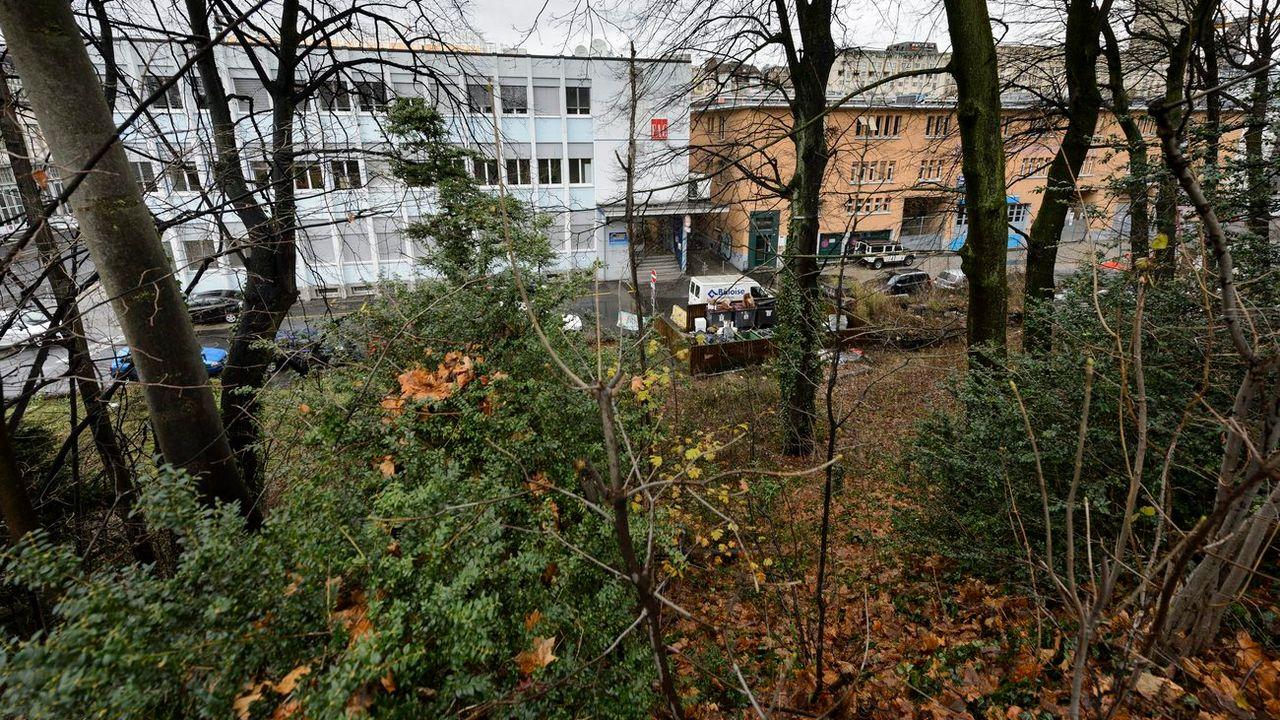 Une partie de la forêt du Flon doit être détruite pour construire la rampe Vigie-Gonin  [Laurent Gilliéron - Keystone]
