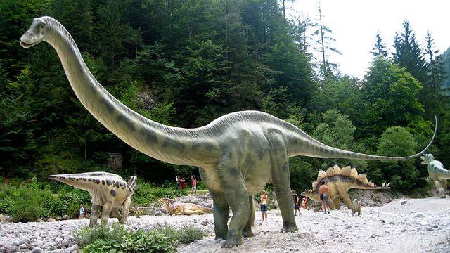 Un diplodocus de l'exposition world of dinosaurs à Vallorbe. [DR - dinoworld.ch]