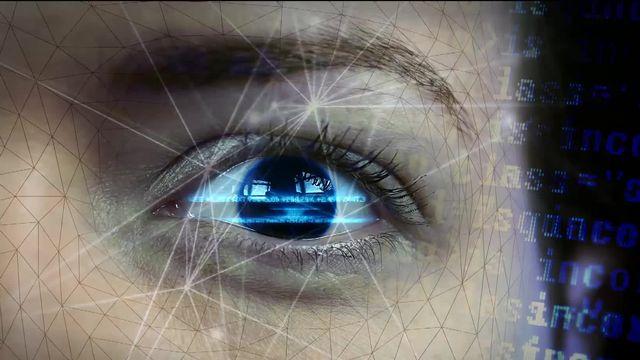 La police suisse affirme ne pas avoir les moyens, ni les ressources pour faire de la surveillance vidéo en live avec de la reconnaissance faciale. [RTS]