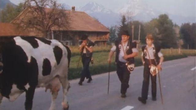 La montée à l'alpage. Gruyère, 1981. [RTS]