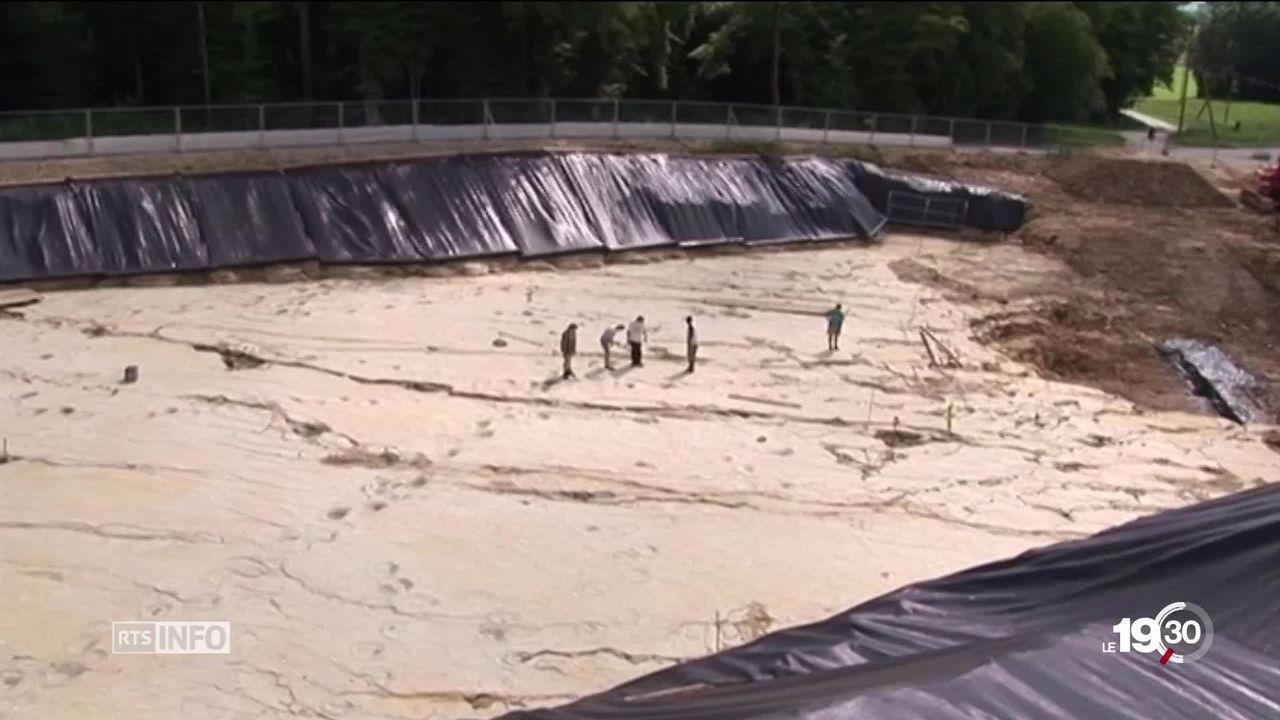 Le Jura clôture l'épopée de ses fouilles paléontologiques [RTS]