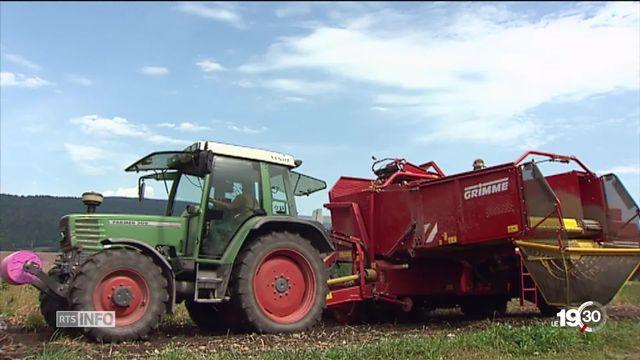 Douze pesticides sont bannis en Suisse. Des produits qui peuvent endommager le cerveau des embryons et des jeunes enfants. [RTS]