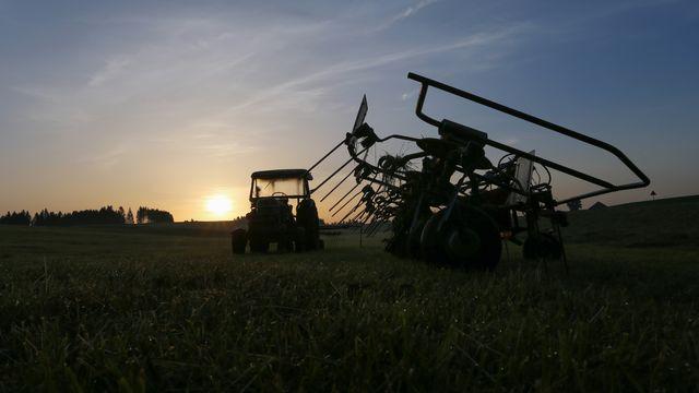 Le secteur agricole pourrait être particulièrement touché, selon le rapport de l'OIT. [Karl-Josef Hildenbrand - AFP]