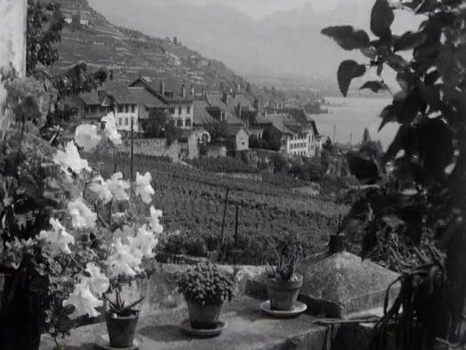 Le village de Rivaz [RTS]