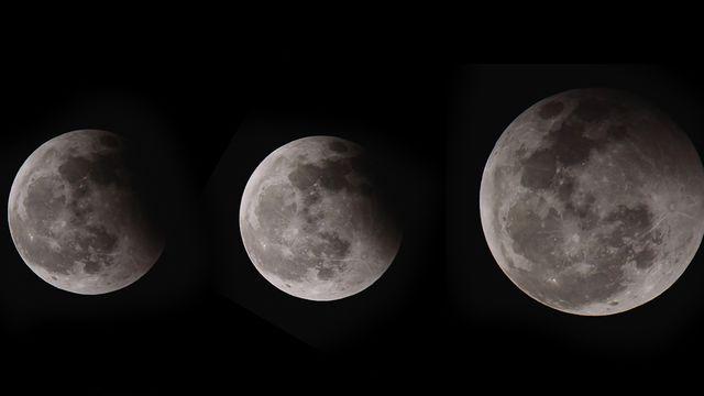 """Le dossier de """"CQFD"""" sur la Lune. Jayjaynaenae Depositphotos [Jayjaynaenae - Depositphotos]"""