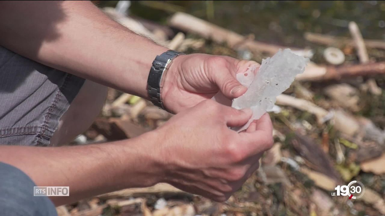 Le Léman est aussi pollué par les plastiques que la mer Méditerranée. Ce sont les conclusions d'une ONG genevoise. [RTS]