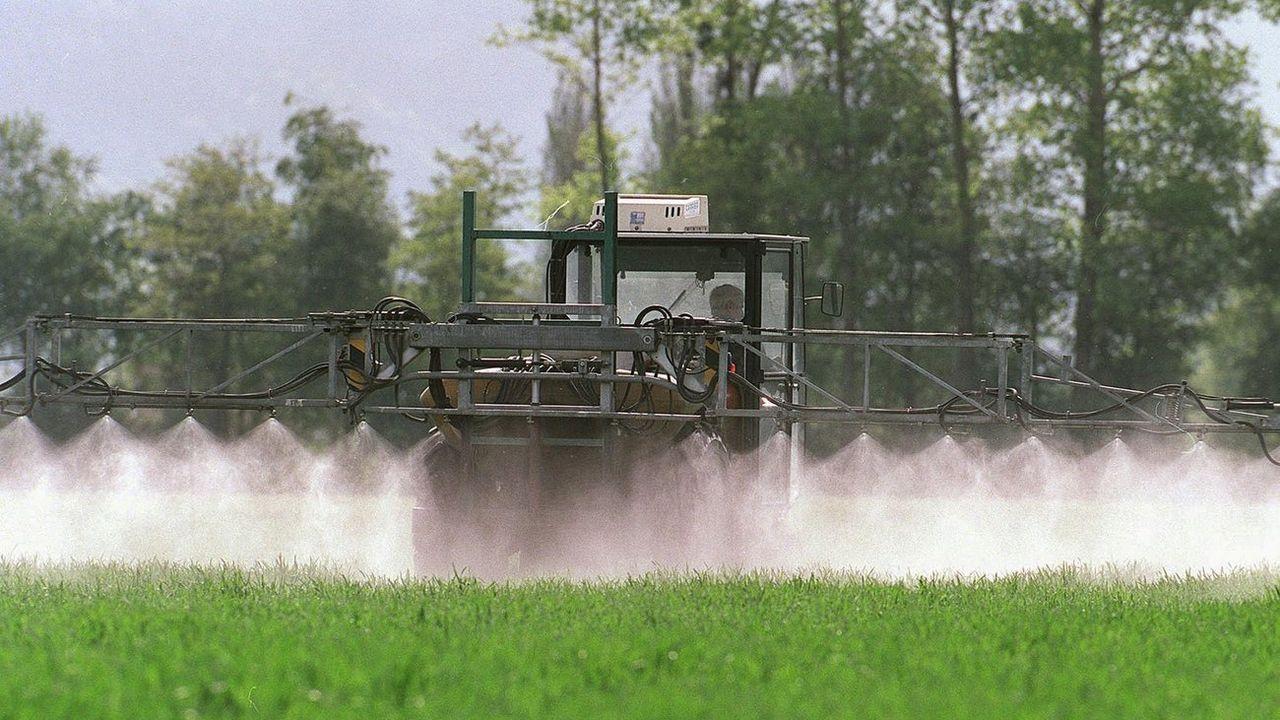 Trois entreprises s'opposent catégoriquement à l'interdiction des pesticides décidée en mai 2019. [Arno Balzarini - Keystone]