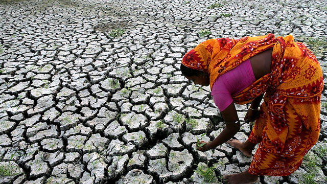 Le réchauffement provoque événements climatiques extrêmes comme des sécheresses. [Piyal Adhikary - EPA/Keystone]