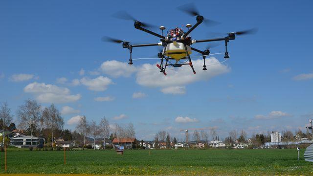 Les drones pulvérisateurs pourraient se répandre rapidement en Suisse. [Thomas Anken - Agroscope]