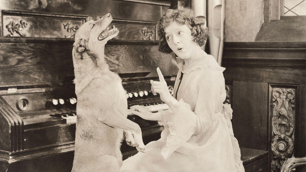 Les animaux sont très présents dans la musique classique. [everett225 - Depositphotos]