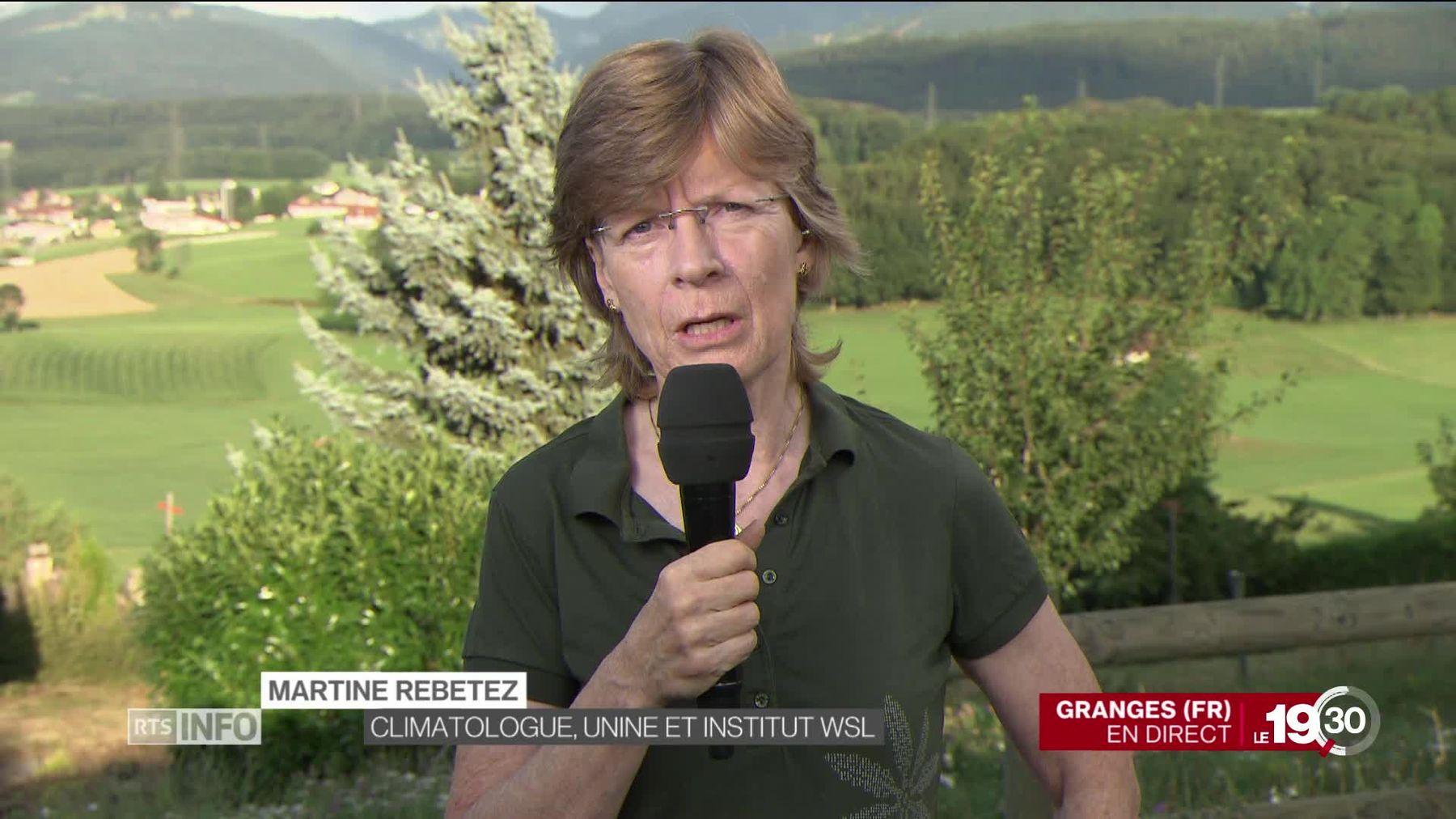 Climat: le GIEC se réunit à Genève. La climatologue Martine Rebetez analyse les conséquences du dérèglement climatique.