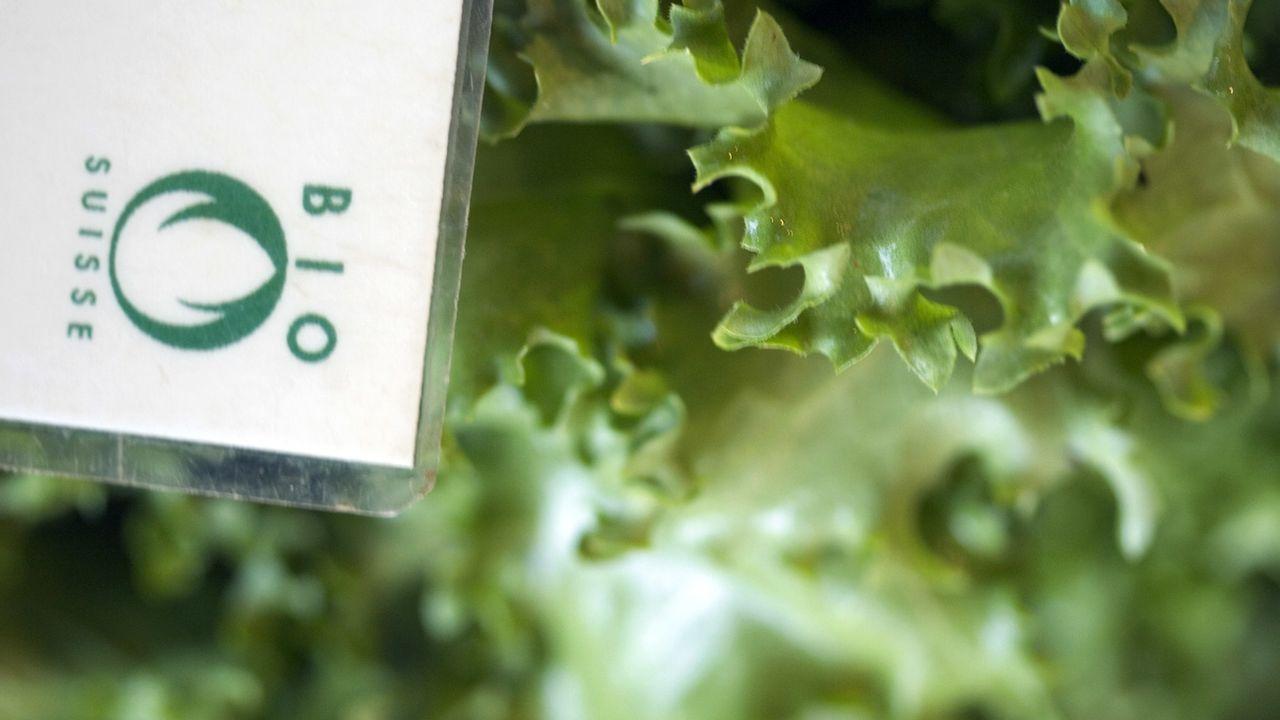 Les différents labels bio sont souvent usurpés en Suisse. [Gaetan Bally - Keystone]