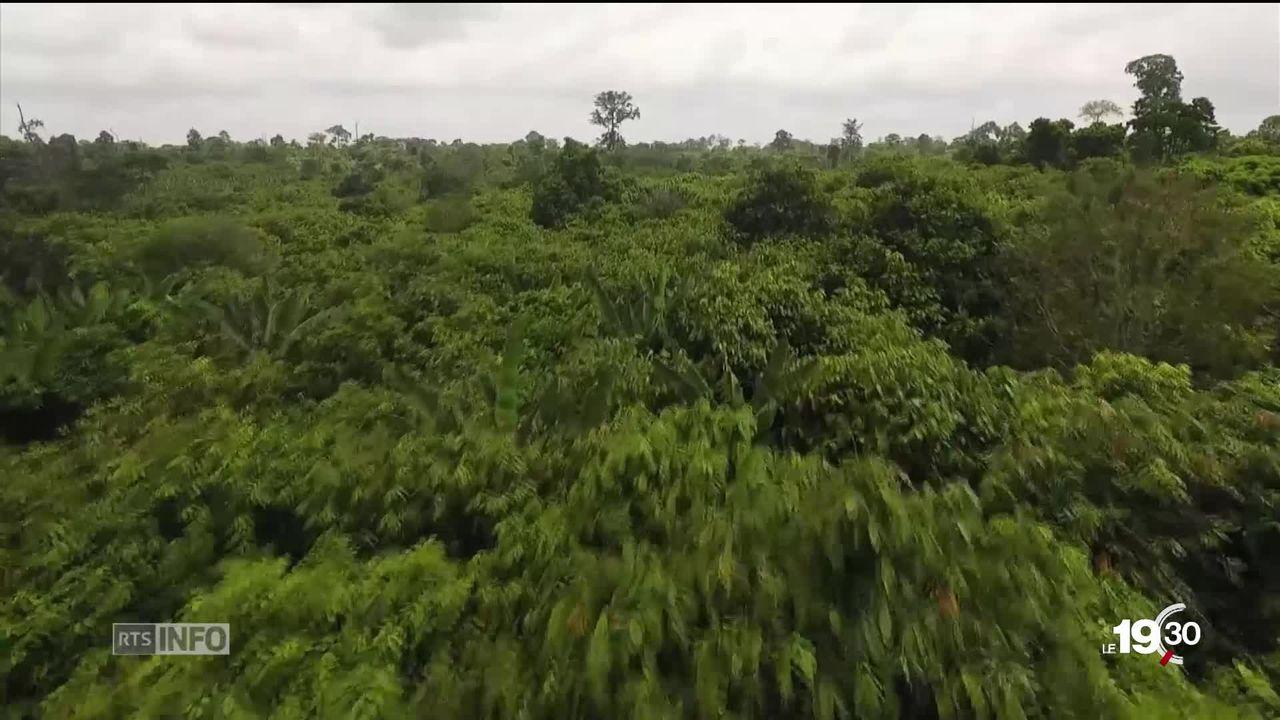 Agriculture et alimentation: les experts de l'ONU sur le climat, le GIEC, publie un rapport alarmant. [RTS]