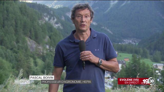 """Pascal Boivin """"Le système agricole a épuisé les sols un peu partout dans le monde, et la Suisse n'y échappe pas."""" [RTS]"""