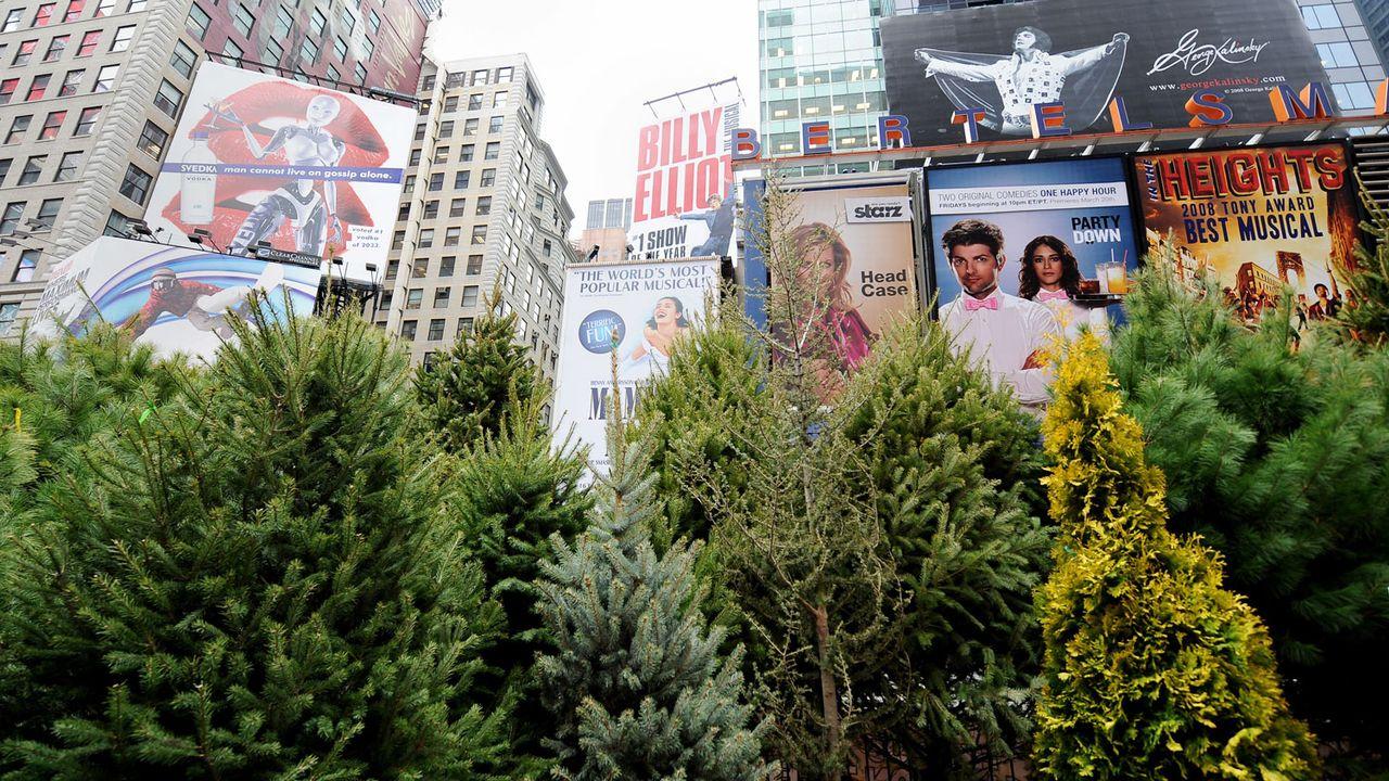De véritables forêts urbaines (ici, une installation provisoire à New York en 2009) pourraient permettre de limiter les températures. [Stan Honda - AFP]