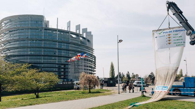 Le Parlement européen a entériné l'interdiction de la pêche électrique en juillet 2019. [Abdesslam Mirdass/Hans Lucas - afp]