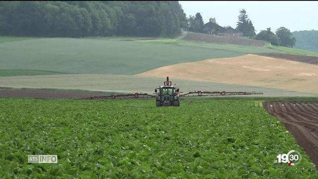 Engrais, pesticides, micropolluants ou médicaments, tous ces produits contaminent les eaux souterraines. [RTS]