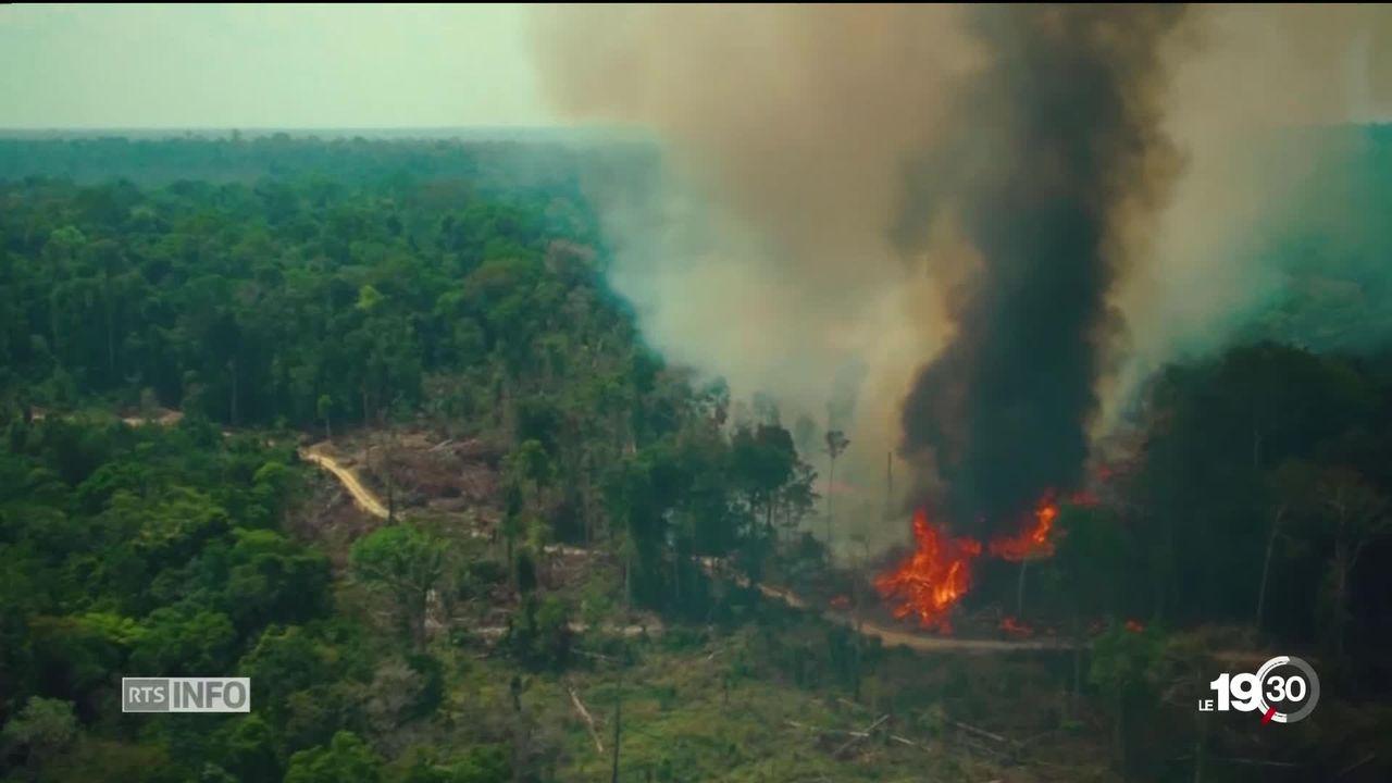 Amazonie: décryptage des informations qui circulent sur les incendies au Brésil. [RTS]