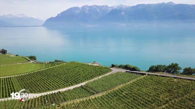Le canton de Vaud a présenté son plan pour protéger Lavaux. Des communes manifestent leur mécontentement. [RTS]