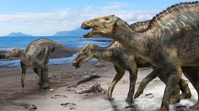 """Voici à quoi devait ressembler la nouvelle espèce de dinosaure, le """"Kamuysaurus japonicus"""". Son nom signifie """"dieu dragon japonais"""". [Masato Hattori - Hokkaido University]"""