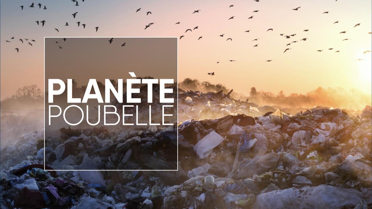 Géopolitis: Planète poubelle [Roman Mikhailiuk - AdobeStock]