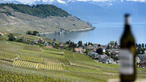 Économie : Inquiets, les cantons viticoles romands en appellent à Berne •