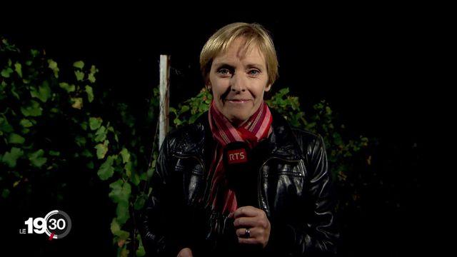 """Flore Dussey """"Les viticulteurs ont demandé l'intervention de la Confédération"""" [RTS]"""