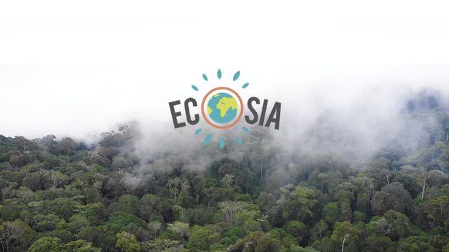 Ecosia reverse 80 % de ses bénéfices dans un programme de reforestation présent partout dans le monde.