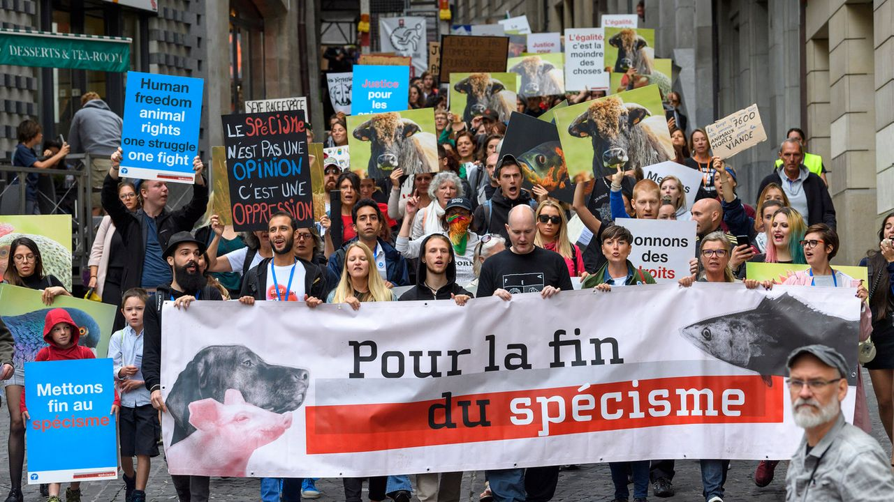 Des manifestants antispécistes dans les rues de Genève, ce samedi 25 août. [Martial Trezzini - Keystone]