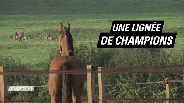 Le Mag: la dynastie Fuchs [RTS]