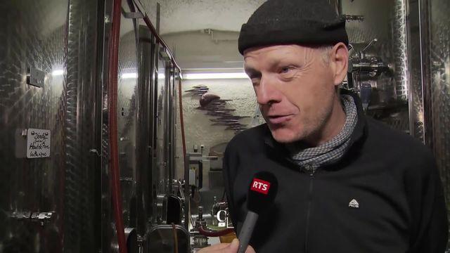 Les vignerons de Lavaux évoquent l'impact du Patrimoine mondial sur leur quotidien. [RTS]
