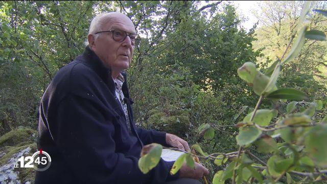 Francis Hallé, défenseur passionné des forêts tropicales, en visite à Neuchâtel. [RTS]