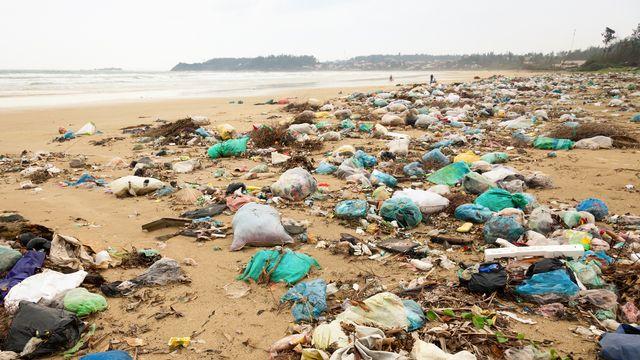 De nombreux plastiques parmi les déchets rejetés par les océans. dnaumoid Depositphotos [dnaumoid - Depositphotos]