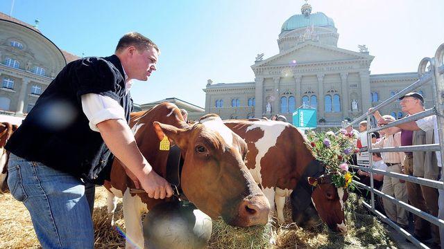 Un agriculteur, devant le Parlement fédéral à Berne. [Lukas Lehmann - Keystone]