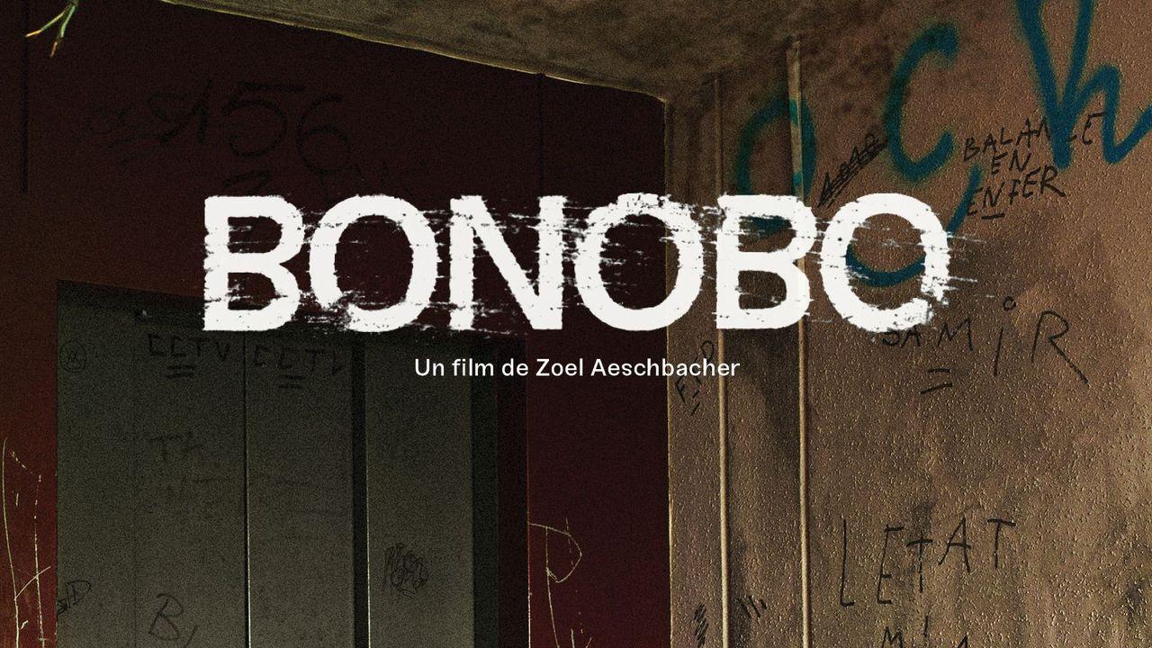 "L'affiche du film ""Bonobo"" de Zoel Aeschbacher. [ecal.ch]"