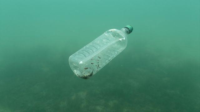 Une bouteille en plastique flottant dans l'Adriatique. (Image d'illustration). [Antonio Bronic - Reuters]