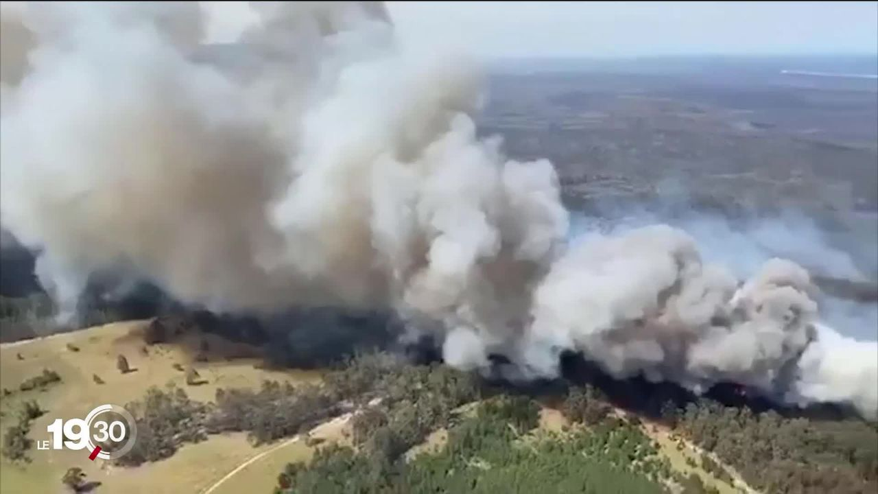 Etat d'urgence en Australie, les feux sont catastrophiques. Le gouvernement accusé d'avoir minimisé le changement climatique. [RTS]