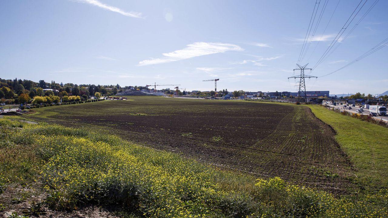 Le déclassement d'une zone agricole au Pré-du-Stand (GE) a été rejeté en votation. [Salvatore di Nolfi - Keystone ]