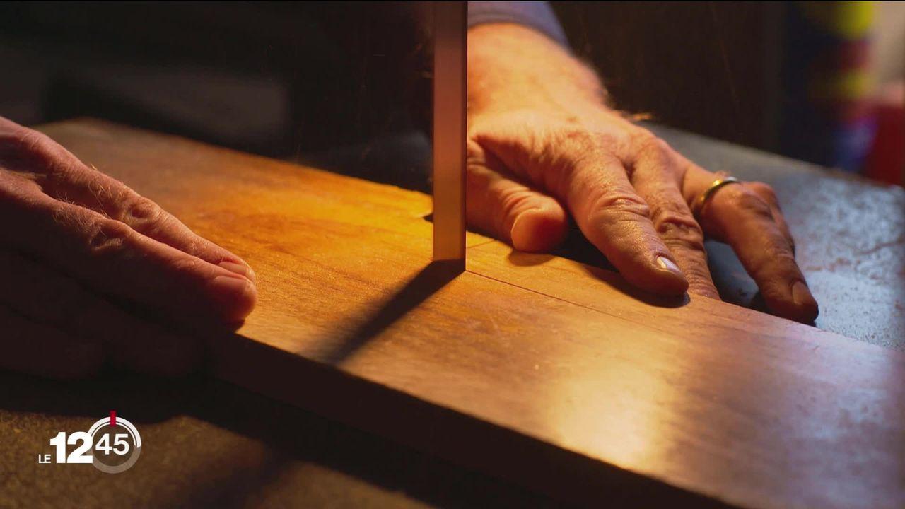 Des Suisses réinventent le bois indigène, dur comme l'ébène et facilement usinable [RTS]