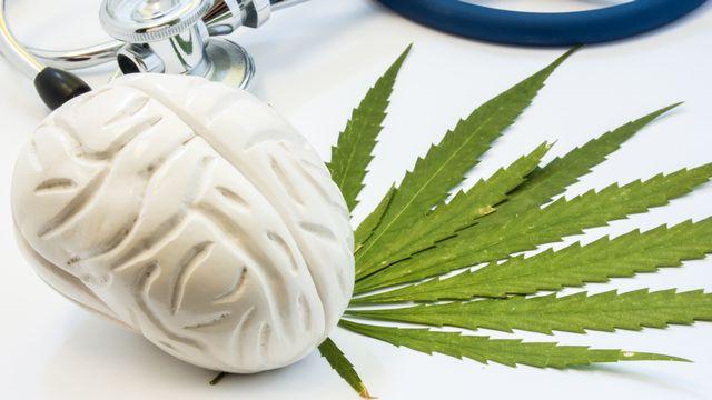 Le lien entre cannabis et schizophrénie est connu des scientifiques. Shidlovski Depositphotos [Shidlovski - Depositphotos]